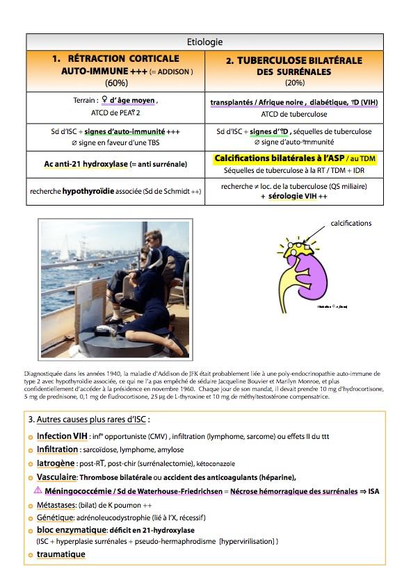 ENDOCRINOLOGIE DIABETOLOGIE